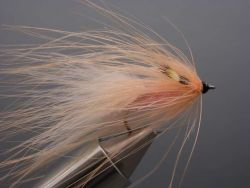 barsoe-queen-salmon-436