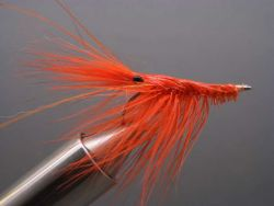 patty-shrimpburned-orange-456
