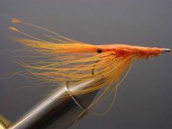 x-patty-shrimp-fluo-orange-463