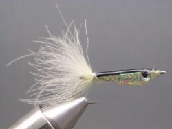 epoxy-minnow-545