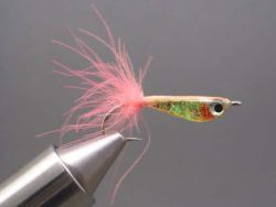 epoxy-minnow-546